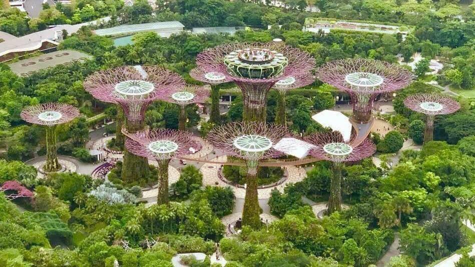 Công Viên Ánh Sáng Vinhomes Grand Park quy mô lớn nhất Đông Nam Á 3